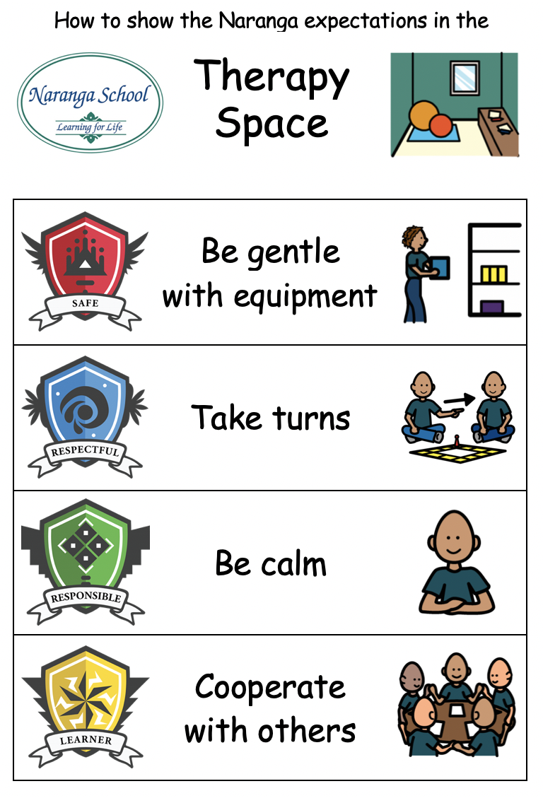 Therapy Space Behaviours